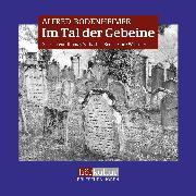 Cover-Bild zu Bodenheimer, Alfred: Im Tal der Gebeine (Audio Download)