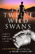 Cover-Bild zu Starhawk: The Twelve Wild Swans