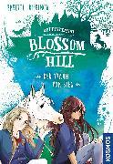 Cover-Bild zu Pribbenow, Babette: Reitinternat Blossom Hill, Der Traum vom Sieg (eBook)