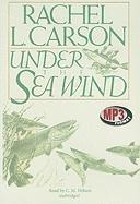 Cover-Bild zu Carson, Rachel L.: Under the Sea Wind