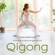 Cover-Bild zu Evans, Gomer Edwin (Komponist): Qi Gong