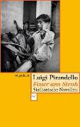 Cover-Bild zu Pirandello, Luigi: Feuer ans Stroh