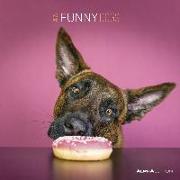 Cover-Bild zu Alpha Edition (Hrsg.): Funny Dogs 2022 - Broschürenkalender 30x30 cm (30x60 geöffnet) - Kalender mit Platz für Notizen - Hunde - Bildkalender - Wandplaner - Alpha Edition
