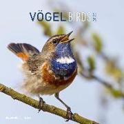 Cover-Bild zu ALPHA EDITION (Hrsg.): Vögel 2022 - Broschürenkalender 30x30 cm (30x60 geöffnet) - Kalender mit Platz für Notizen - Birds - Bildkalender - Wandplaner - Alpha Edition
