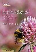 Cover-Bild zu Goulson, Dave: Bumblebees: Behaviour, Ecology, and Conservation