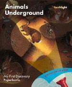 Cover-Bild zu Moignot, Daniel (Illustr.): Animals Underground