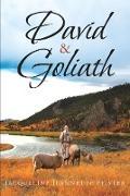 Cover-Bild zu Pfister, Jacqueline Jeannette: David & Goliath (eBook)