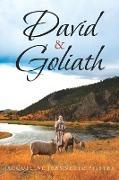 Cover-Bild zu Pfister, Jacqueline Jeannette: David & Goliath