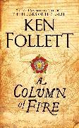 Cover-Bild zu Follett, Ken: A Column of Fire