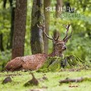 Cover-Bild zu Alpha Edition (Hrsg.): Wald und Flur 2022 - Broschürenkalender 30x30 cm (30x60 geöffnet) - Kalender mit Platz für Notizen - Forest Animals - Bildkalender - Alpha Edition
