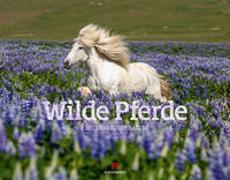 Cover-Bild zu Ackermann Kunstverlag (Hrsg.): Wilde Pferde Kalender 2022