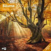 Cover-Bild zu Ackermann Kunstverlag (Hrsg.): Bäume Kalender 2022 - 30x30