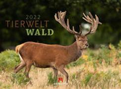 Cover-Bild zu Ackermann Kunstverlag (Hrsg.): Tierwelt Wald Kalender 2022