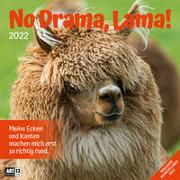 Cover-Bild zu Ackermann Kunstverlag (Hrsg.): No Drama, Lama! Kalender 2022 - 30x30