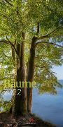 Cover-Bild zu Ackermann Kunstverlag (Hrsg.): Bäume Kalender 2022