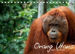 Cover-Bild zu Arndt, Attila: Orang Utans von Borneo Tierkalender 2022 (Tischkalender 2022 DIN A5 quer)