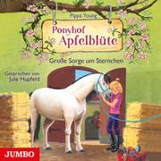 Cover-Bild zu Young, Pippa: Ponyhof Apfelblüte. Große Sorge um Sternchen