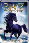 Cover-Bild zu Farley, Walter: Blitz (Bd. 1)