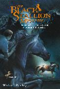Cover-Bild zu Farley, Walter: The Black Stallion Mystery