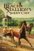 Cover-Bild zu Farley, Walter: The Black Stallion's Sulky Colt (eBook)