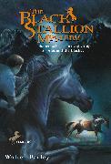 Cover-Bild zu Farley, Walter: The Black Stallion Mystery (eBook)