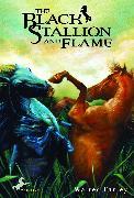 Cover-Bild zu Farley, Walter: The Black Stallion and Flame (eBook)