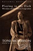Cover-Bild zu Morrison, Toni: Playing In The Dark