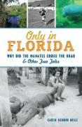 Cover-Bild zu Only in Florida (eBook) von Neile, Caren Schnur