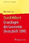 Cover-Bild zu David Hilbert von Volkert, Klaus (Hrsg.)