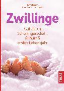 Cover-Bild zu Zwillinge (eBook) von von Haugwitz, Dorothee