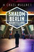 Cover-Bild zu Wallner, Michael: Shalom Berlin - Gelobtes Land