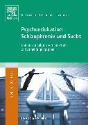 Cover-Bild zu Psychoedukation Schizophrenie und Sucht von D´Amelio, Roberto