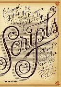 Cover-Bild zu Heller, Steven: Scripts
