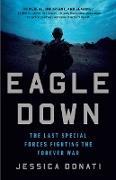 Cover-Bild zu Donati, Jessica: Eagle Down (eBook)