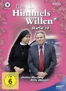 Cover-Bild zu Um Himmels Willen von Baier, Michael