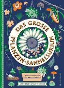 Cover-Bild zu Jenkins, Martin: Das große Pflanzen-Sammelsurium