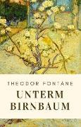 Cover-Bild zu Theodor Fontane: Unterm Birnbaum (eBook) von Fontane, Theodor