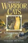 Cover-Bild zu A Dangerous Path von Hunter, Erin