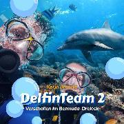 Cover-Bild zu Verschollen im Bermuda-Dreieck - DelfinTeam 2 (Ungekürzt) (Audio Download) von Brandis, Katja