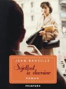 Cover-Bild zu Banville, John: Svjetlost iz davnine (eBook)