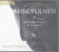 Cover-Bild zu Goldstein, Joseph: Mindfulness: Six Guided Practices for Awakening