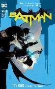 Cover-Bild zu King, Tom: Batman Vol. 8: Cold Days