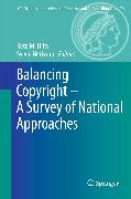 Cover-Bild zu Nérisson, Sylvie (Hrsg.): Balancing Copyright - A Survey of National Approaches (eBook)