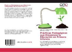 Cover-Bild zu Castañeda Pulido, Nancy Elvira: Prácticas Pedagógicas que Dinamizan la Educación en Primera Infancia