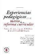 Cover-Bild zu Arredondo, Martha Isabel: Experiencias pedagógicas en el marco de la reforma curricular (eBook)