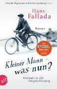 Cover-Bild zu Kleiner Mann - was nun? von Fallada, Hans