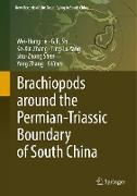 Cover-Bild zu He, Wei-Hong (Hrsg.): Brachiopods Around the Permian-Triassic Boundary of South China