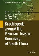 Cover-Bild zu He, Wei-Hong (Hrsg.): Brachiopods around the Permian-Triassic Boundary of South China (eBook)