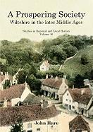 Cover-Bild zu Hare, John: A Prospering Society