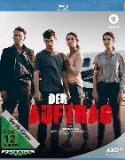 Cover-Bild zu Schmidt, Holger Karsten: Der Auftrag